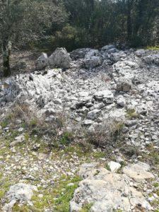 Photo ruine cabane de charbonnier